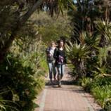 Stellenbosch U Botanical Garden