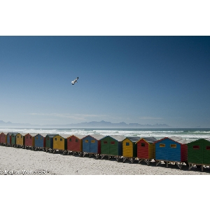 Gallery-Colourful-Beach-Houses